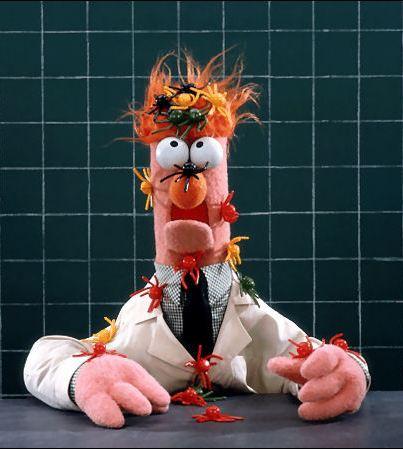 Beaker | The Muppet Mindset | Page 2