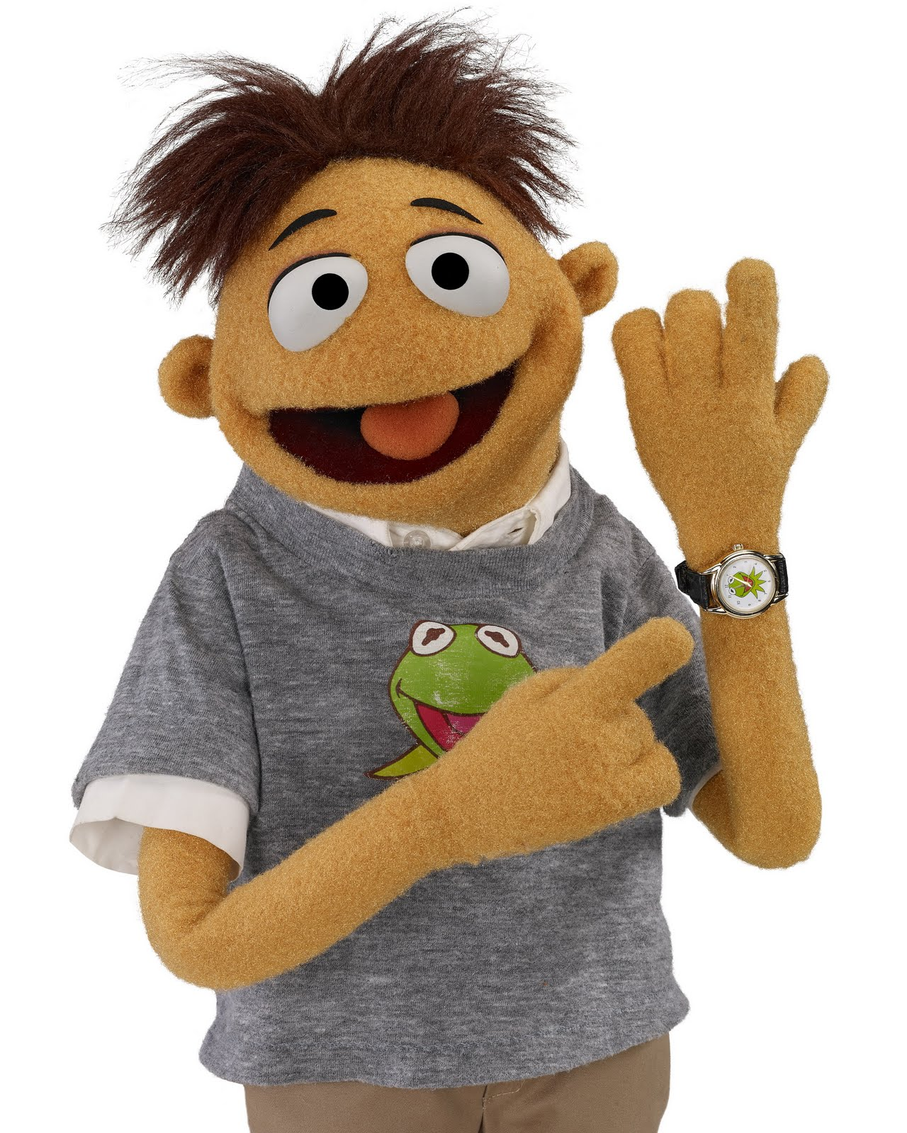 official character descriptions from quotthe muppetsquot the