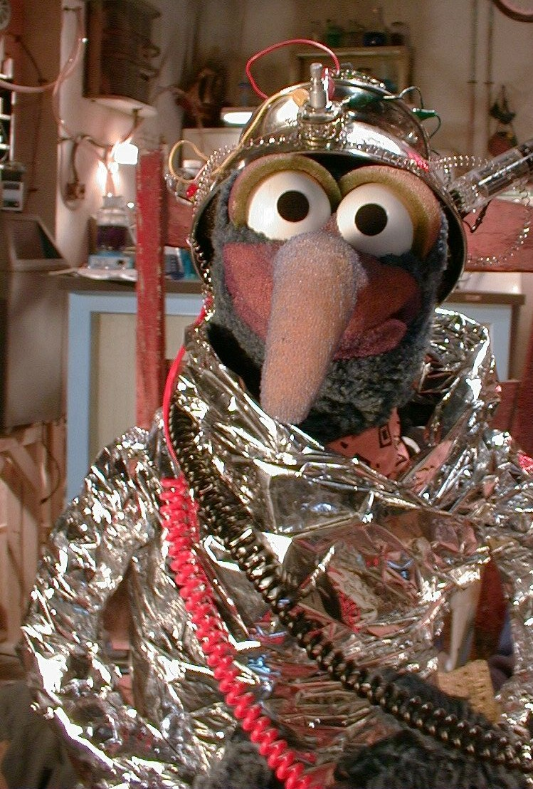 Gonzo In Space