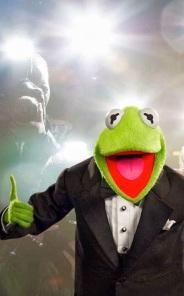 Kermit Flashbulbs