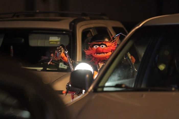 MuppetsABCAnimal