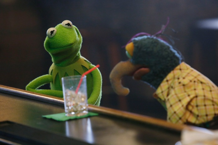 KERMIT THE FROG, THE GREAT GONZO