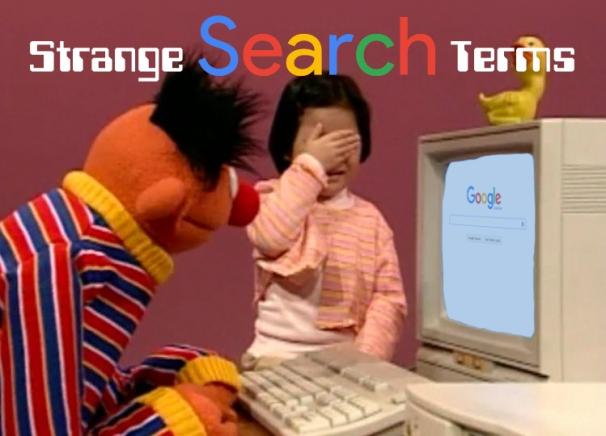 Strange Search Terms
