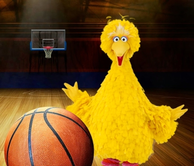 Big Bird Basketball
