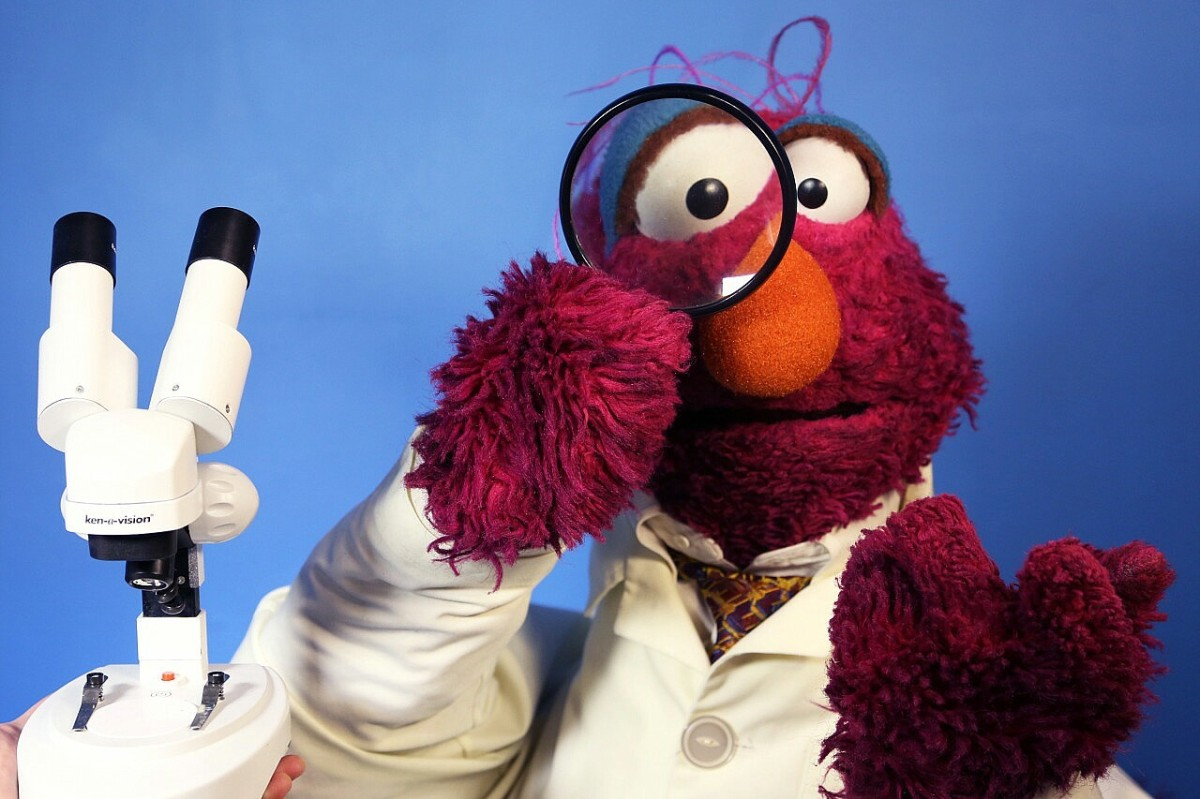 The Top 10 Songs of: Telly Monster