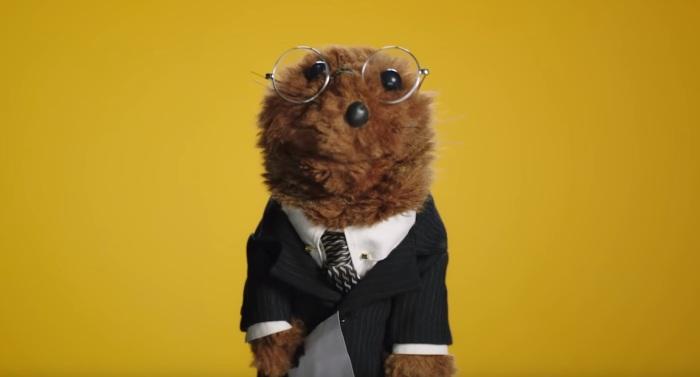 joe the legal weasel